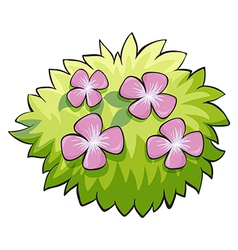 Flower plant vector image vector image