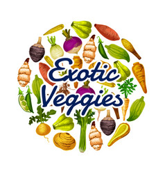 Healthy food exotic dieting veggies round icon vector