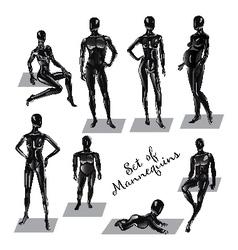 Manekens vector image