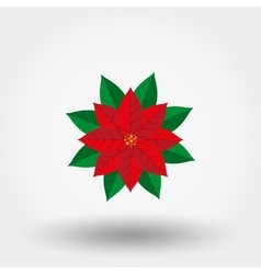 Poinsettia Christmas Star icon vector image
