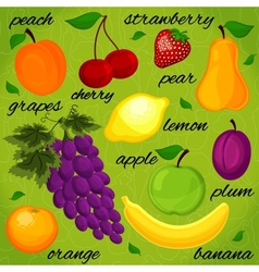 Set it is realistic the drawn fruit vector