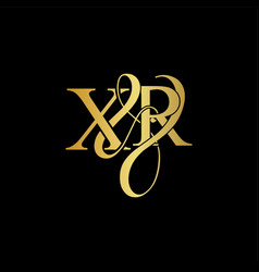 xr x r logo initial mark vector image