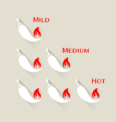 chilli peppers scale vector image vector image