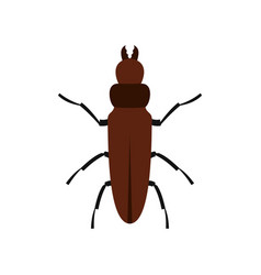 cockroach icon flat style vector image