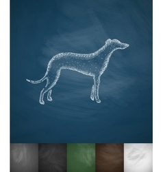 Greyhound icon vector