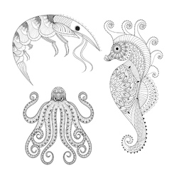 Hand drawn zentangle Shrimp Sea Horse Octopus vector image