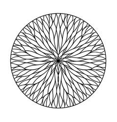 Natural weave ornament vector