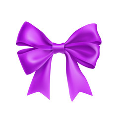 Romantic purple ribbon bow isolated on white vector