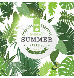 tropical summer paradise background vector image