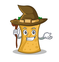 Witch kebab wrap character cartoon vector