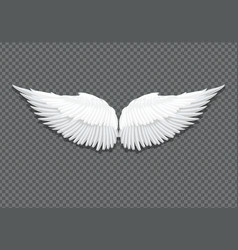 realistic white angel wings on transparent vector image vector image