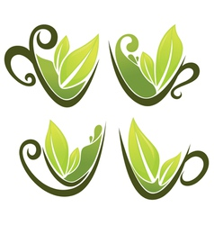 cups full of green tea vector image vector image