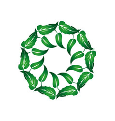 wreath of green leaves 1 vector image