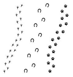 Black foot prints dog horse and bird vector