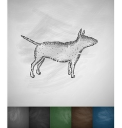 Bull terrier icon vector