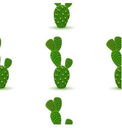 Cactus seamless pattern vector
