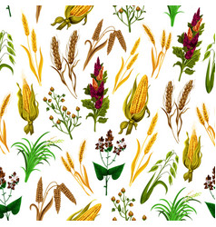 grains and cereals seamless pattern vector image