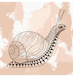 Hand drawn zentangle Snail for adult anti stress vector image