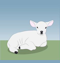 little white lamb lying on nature vector image