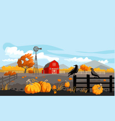 rural with pumpkins vector image