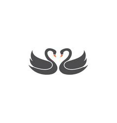 Swan logo template vector