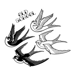 two graphic flying swallows vector image