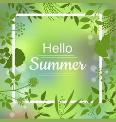hello summer green card vector image