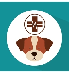 veterinary dog care clinic icon vector image vector image