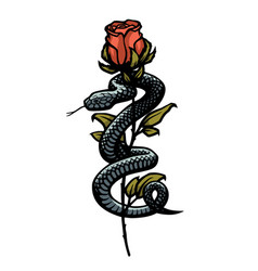 a snake entwined around a rose vector image