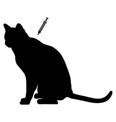 Cat vaccination vector