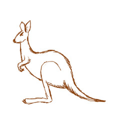 Kangaroo side view vector