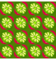 kiwi slices pattern vector image