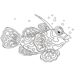 Mandarin fish vector