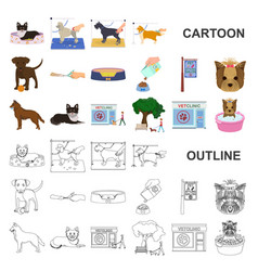 Pet cartoon icons in set collection for design vector