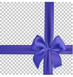 realistic blue bow and ribbon isolated vector image