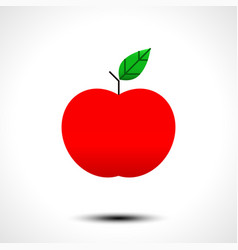 Red apple icon isolated on white background vector