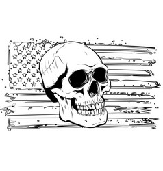 Skull and flag usa graphics vector