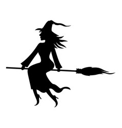 witch with broom and kitty vector image