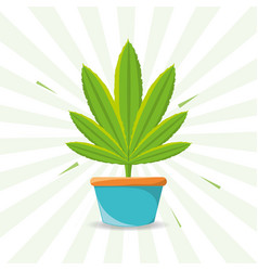 marihuana plant peace and love vector image