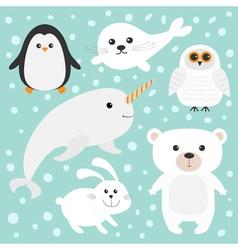 Arctic polar animal set White bear owl penguin vector image