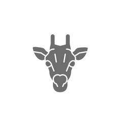 giraffe camelopard head grey icon isolated vector image