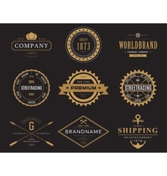 Retro banners and labels for company logotype vector image vector image