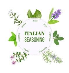 Italian seasoning vector image vector image