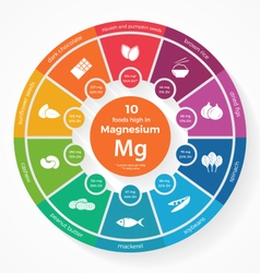 10 foods high in Magnesium vector