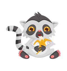 cute lemur eating banana adorable exotic animal vector image