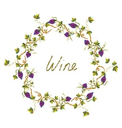 Wine label or background with vines and grape - vector