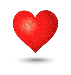 heart on a white background vector image vector image