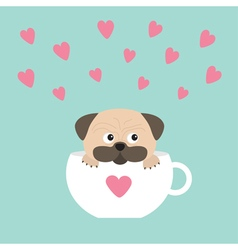 Pug dog mops paw sitting in white cup with heart vector