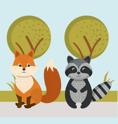cute fox and raccoon wild animals forest landscape vector image