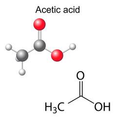 Formula and model of acetic acid molecule vector image